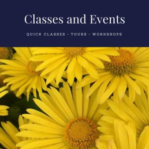 Classes and Events